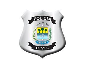 PC PI - Polícia Civil do Piauí - Premium