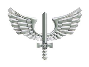 3206 - Aeronáutica - CFS