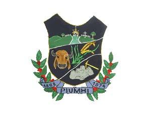 Piumhi/MG - Câmara Municipal(Curso Completo)